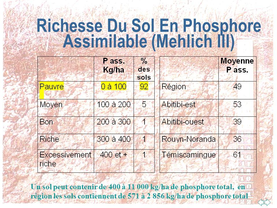 Richesse Du Sol En Phosphore Assimilable (Mehlich III)