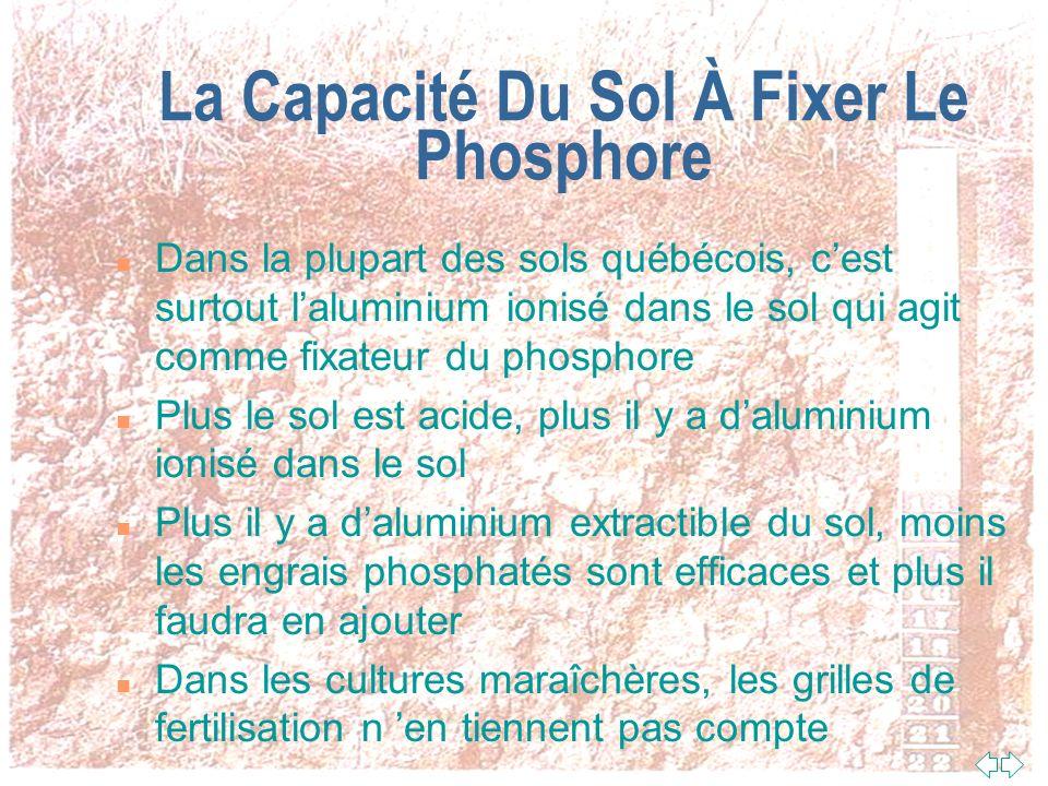La Capacité Du Sol À Fixer Le Phosphore