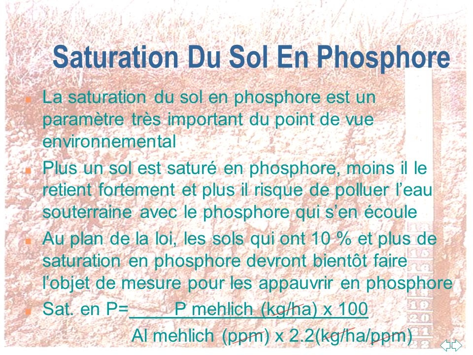 Saturation Du Sol En Phosphore