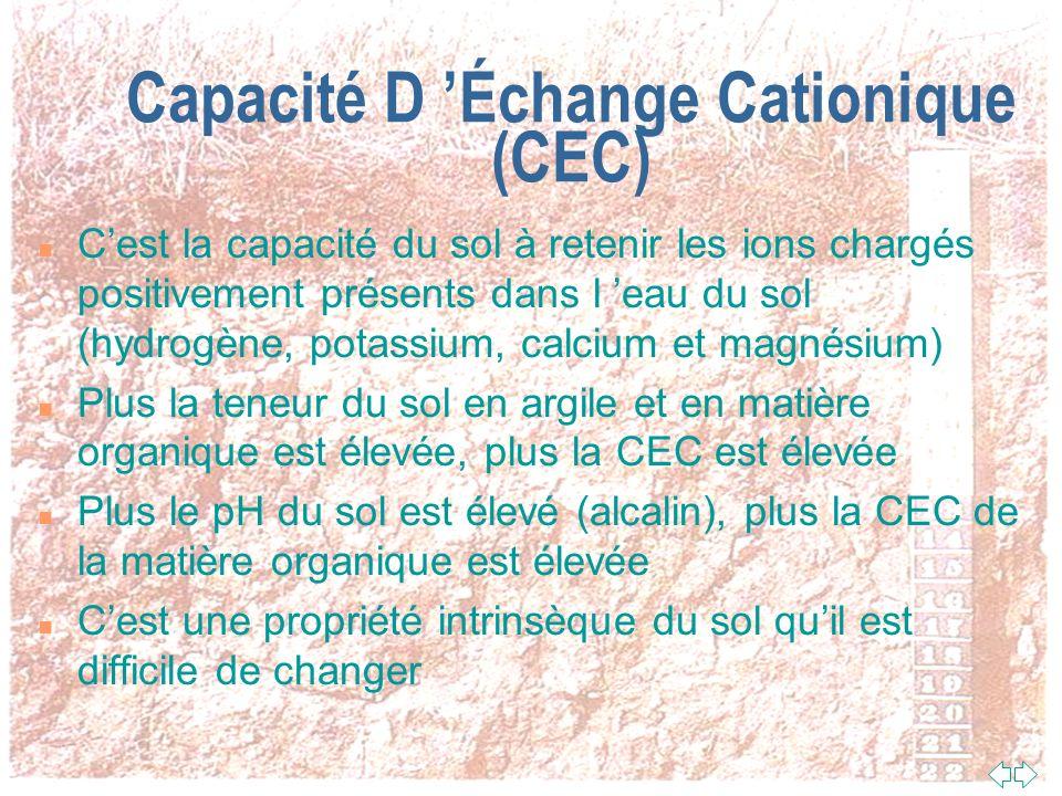 Capacité D 'Échange Cationique (CEC)