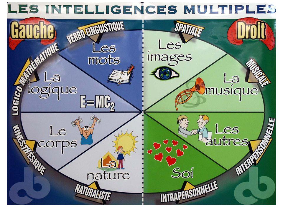 10mn Les I.M. Tout le monde l'utilise intuitivement, instinctivement. On en prend conscience. Correspondance avec une région du cerveau.