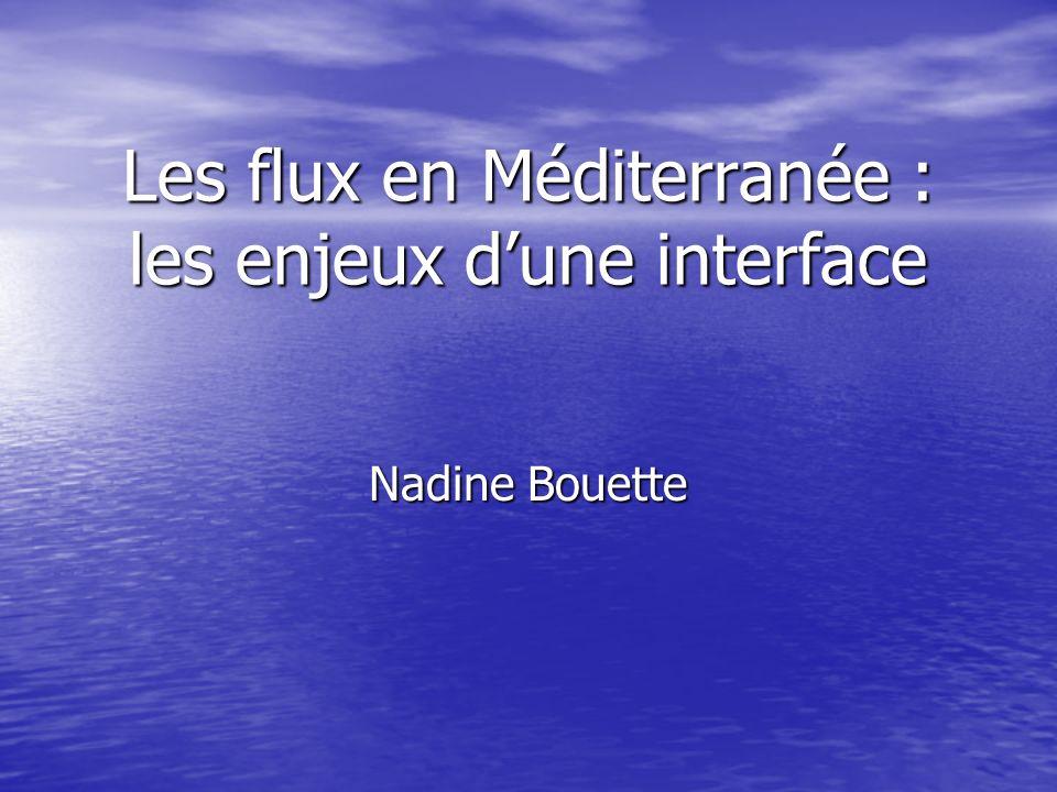 Les flux en Méditerranée : les enjeux d'une interface