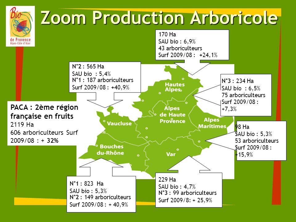 Zoom Production Arboricole