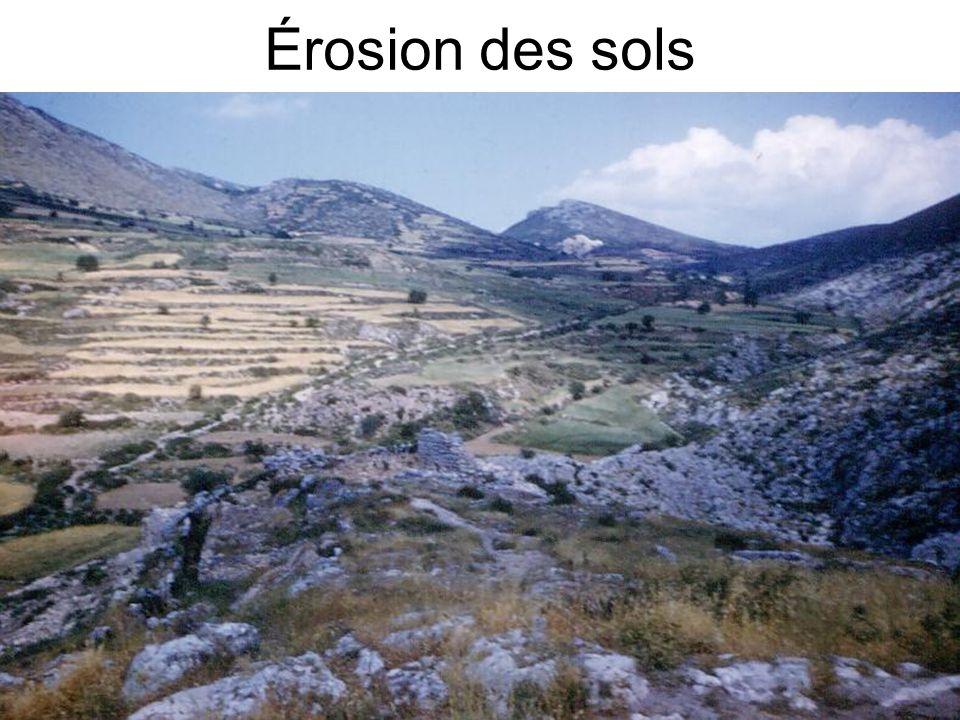 Érosion des sols