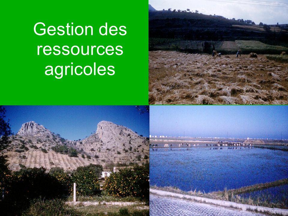 Gestion des ressources agricoles