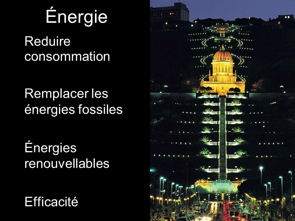 Énergie Reduire consommation Remplacer les énergies fossiles