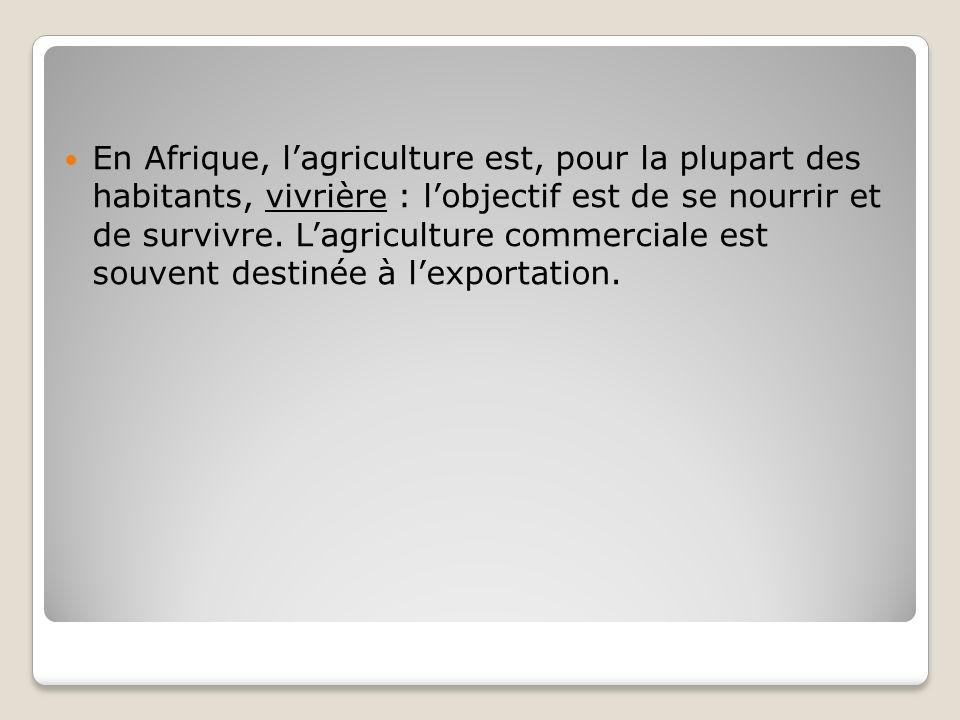 En Afrique, l'agriculture est, pour la plupart des habitants, vivrière : l'objectif est de se nourrir et de survivre.