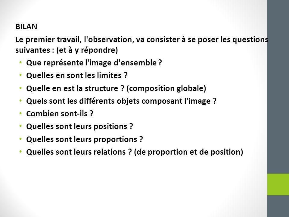 BILAN Le premier travail, l observation, va consister à se poser les questions suivantes : (et à y répondre)