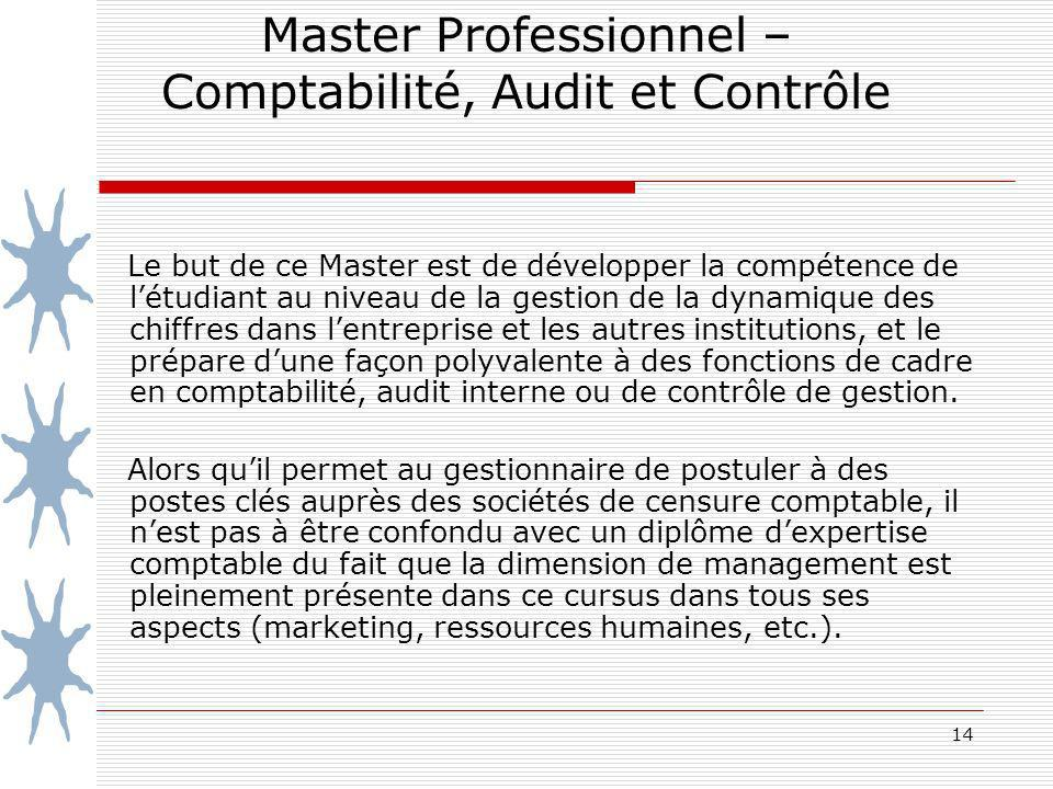 Master Professionnel – Comptabilité, Audit et Contrôle