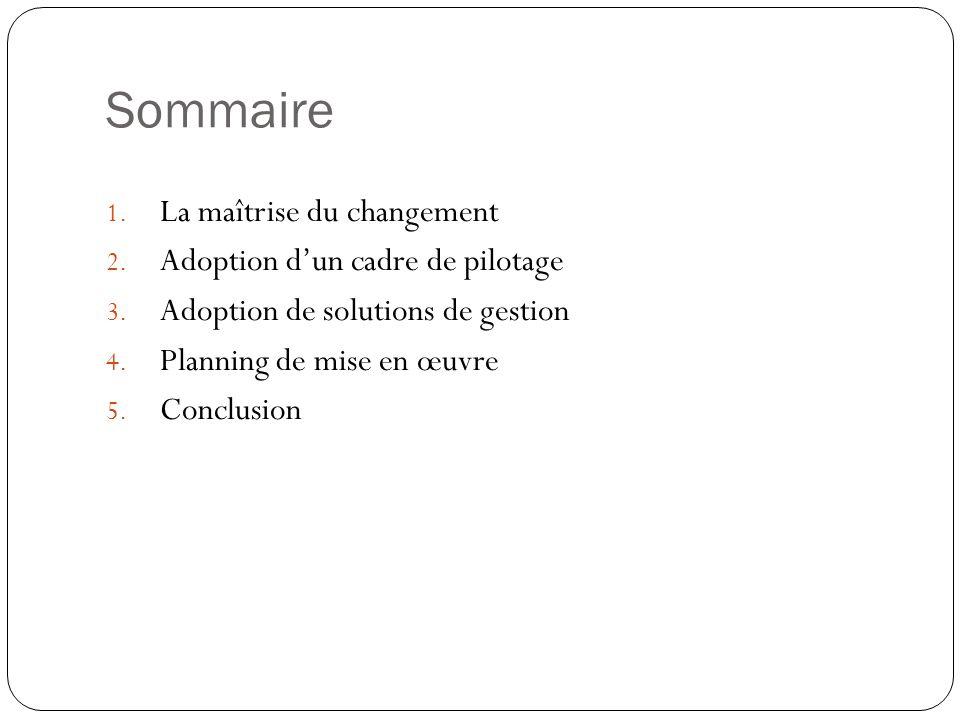 Sommaire La maîtrise du changement Adoption d'un cadre de pilotage