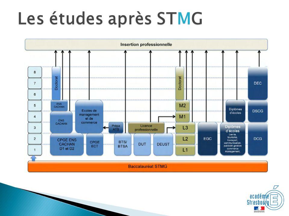 Les études après STMG Les études possibles avec un bac STMG
