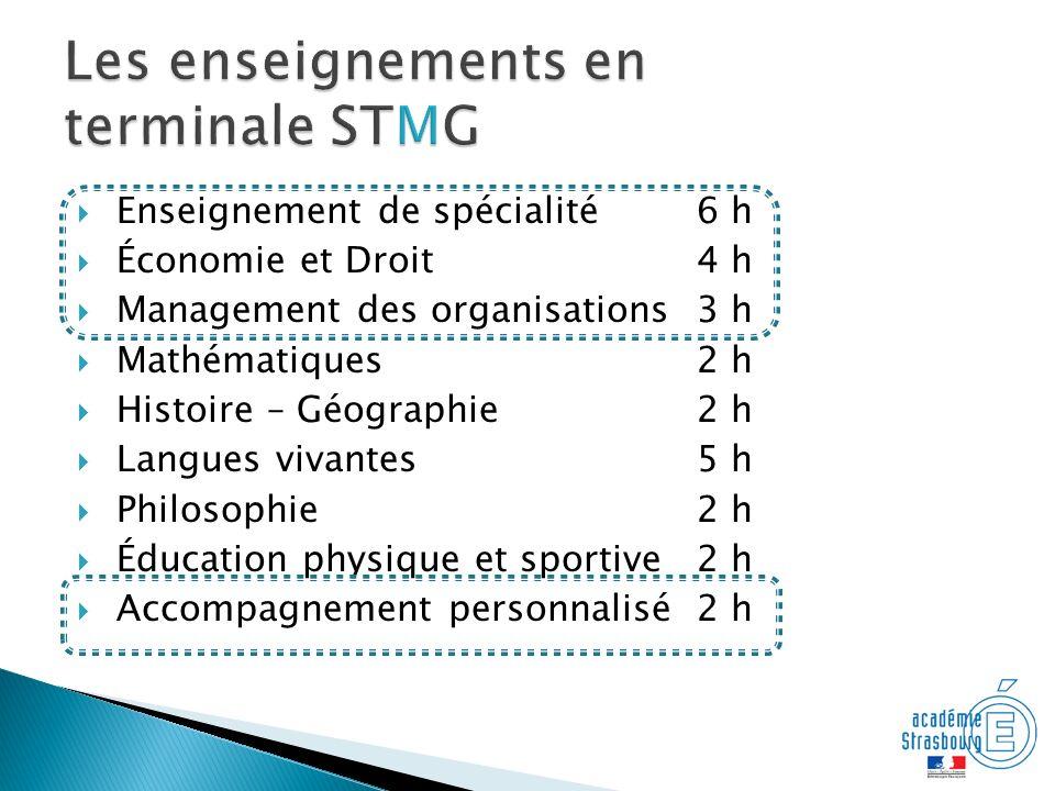 Les enseignements en terminale STMG