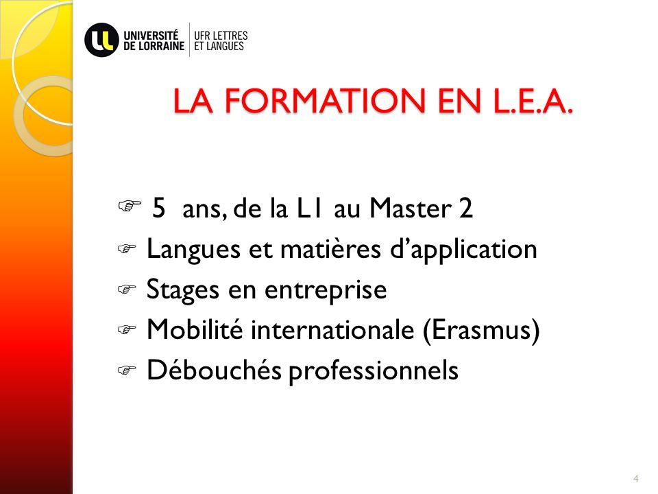 LA FORMATION EN L.E.A.  5 ans, de la L1 au Master 2