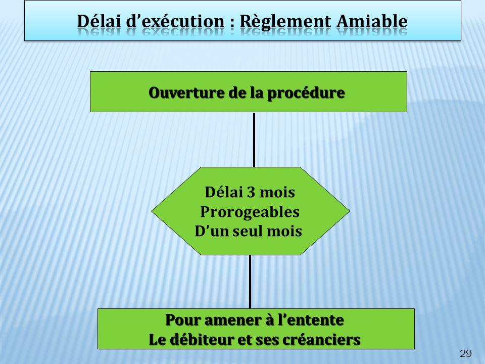 Délai d'exécution : Règlement Amiable