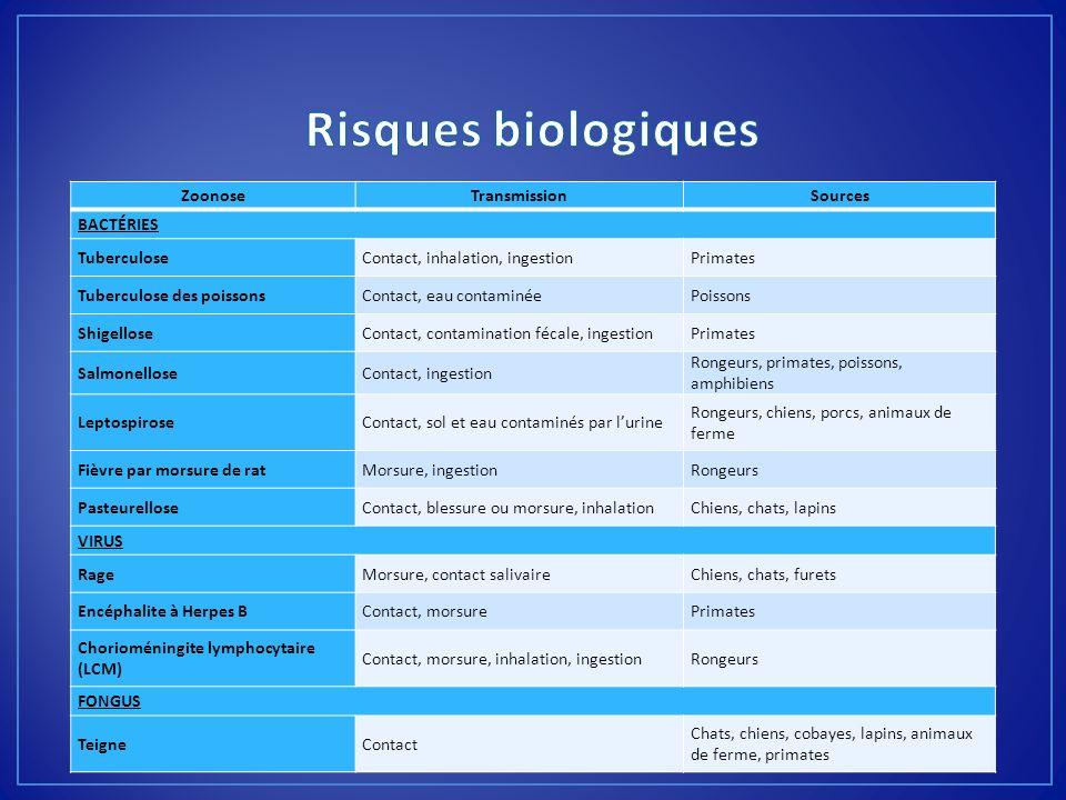 Risques biologiques Zoonose Transmission Sources BACTÉRIES Tuberculose