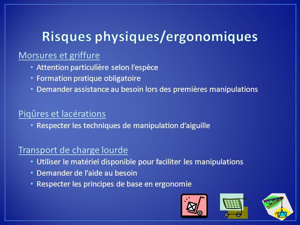 Risques physiques/ergonomiques