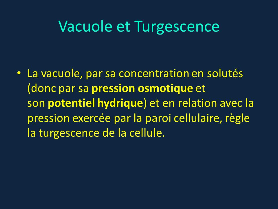 Vacuole et Turgescence