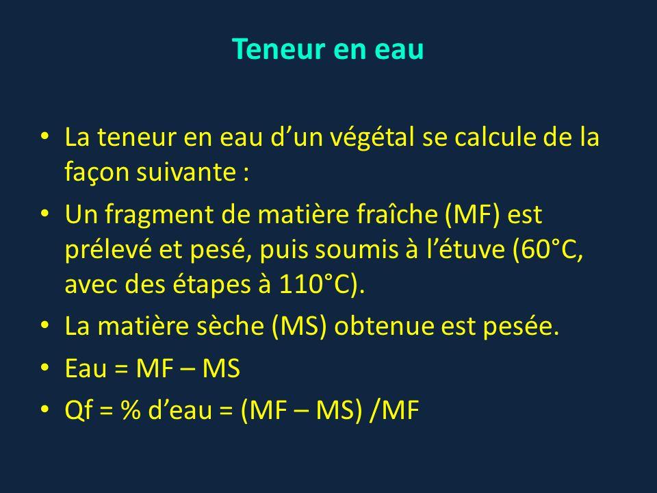 Teneur en eau La teneur en eau d'un végétal se calcule de la façon suivante :