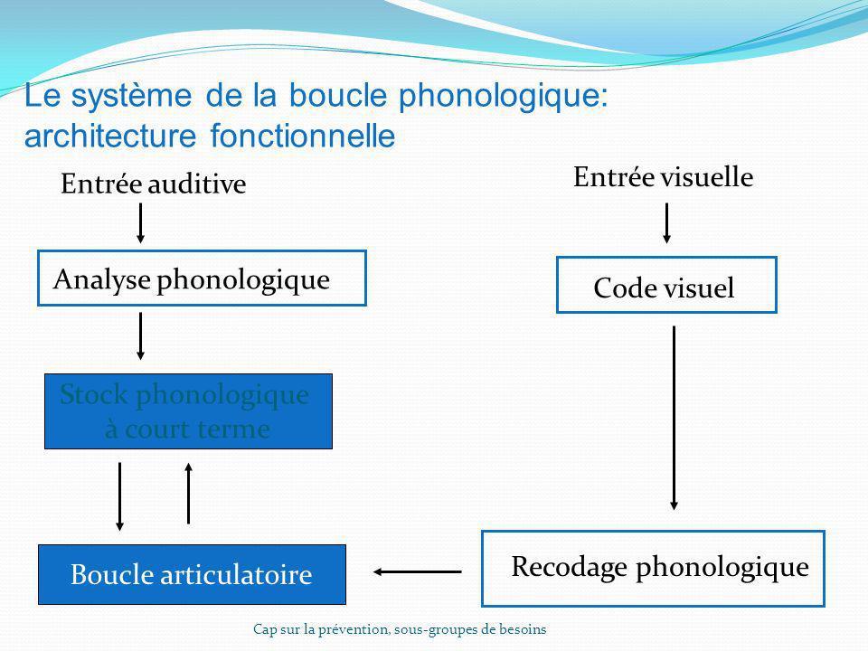 Le système de la boucle phonologique: architecture fonctionnelle