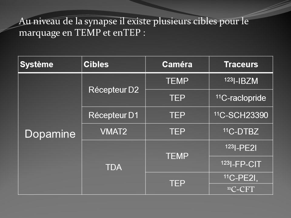 Au niveau de la synapse il existe plusieurs cibles pour le marquage en TEMP et enTEP :