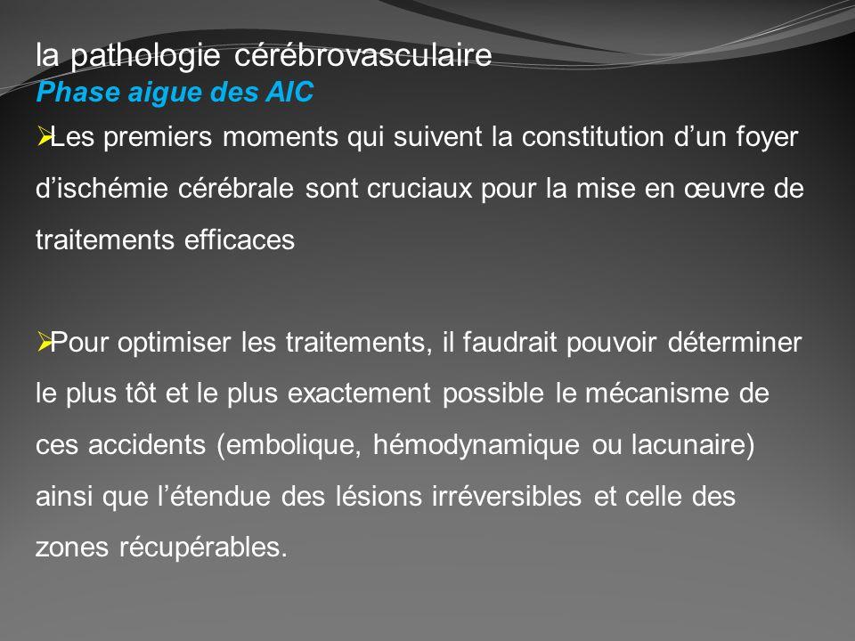 la pathologie cérébrovasculaire