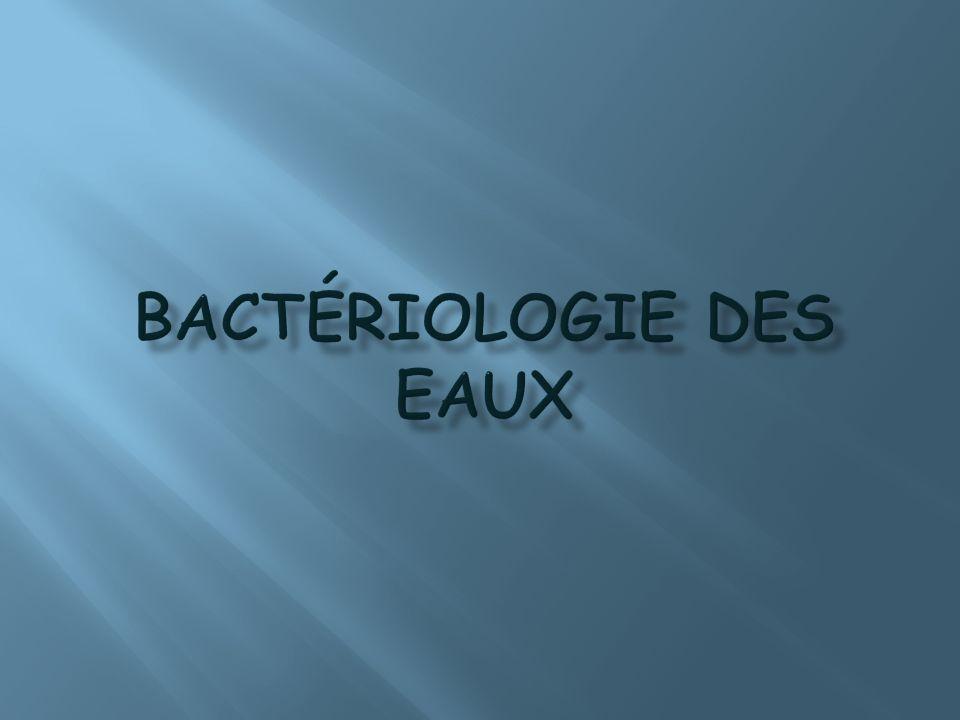 Bactériologie des eaux