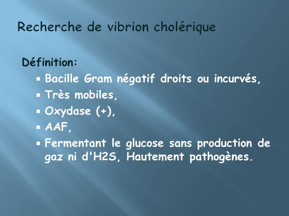 Recherche de vibrion cholérique