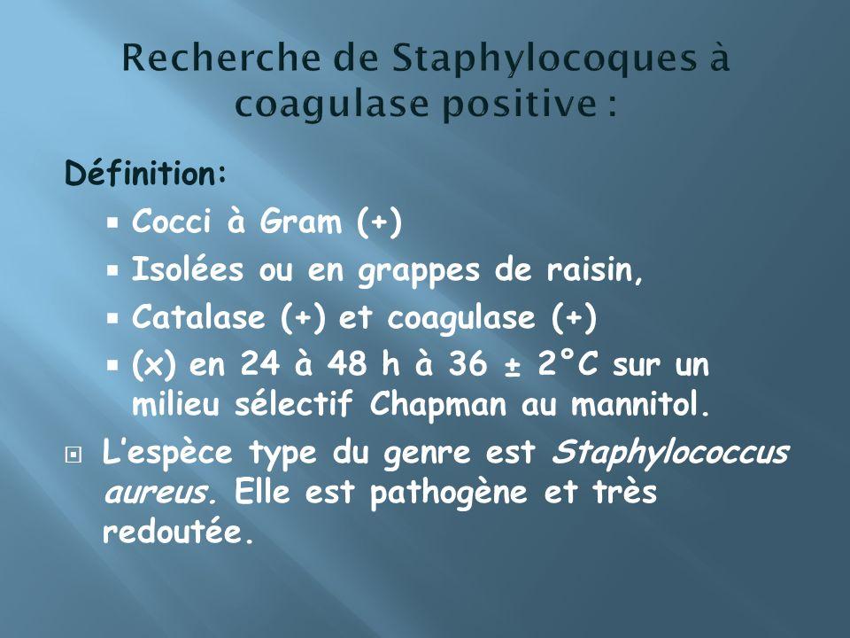 Recherche de Staphylocoques à coagulase positive :