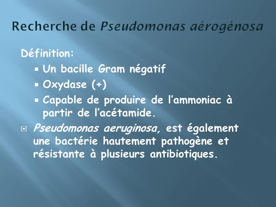 Recherche de Pseudomonas aérogénosa