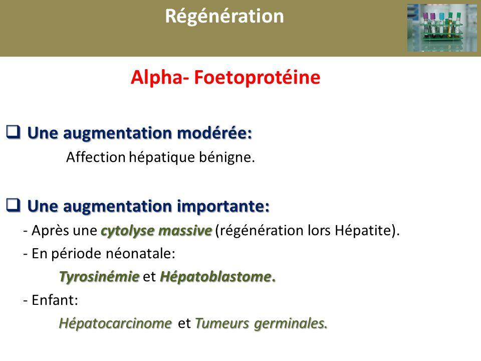 r Régénération Alpha- Foetoprotéine Une augmentation modérée: