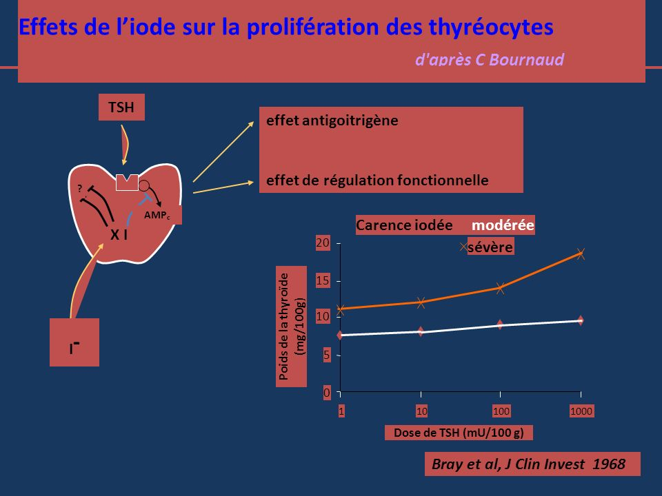 Poids de la thyroïde (mg/100g)