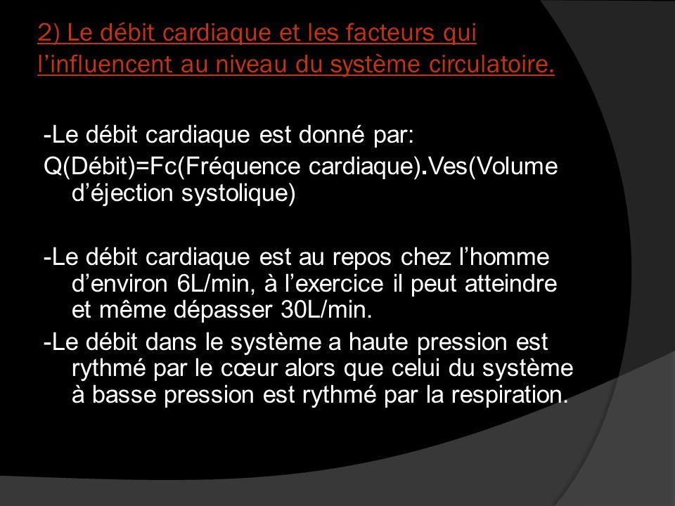 2) Le débit cardiaque et les facteurs qui l'influencent au niveau du système circulatoire.