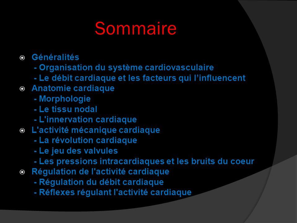 Sommaire Généralités - Organisation du système cardiovasculaire