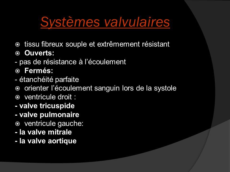 Systèmes valvulaires tissu fibreux souple et extrêmement résistant