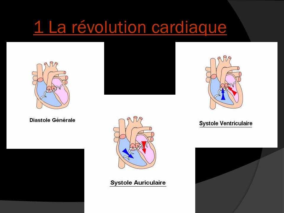 1 La révolution cardiaque
