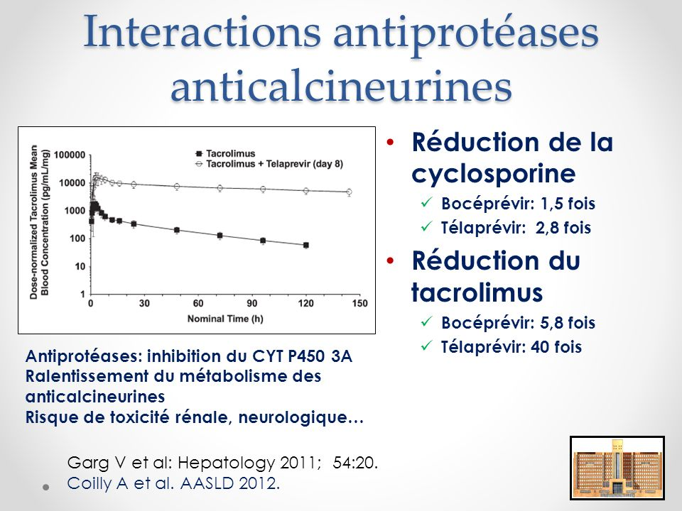 Interactions antiprotéases anticalcineurines