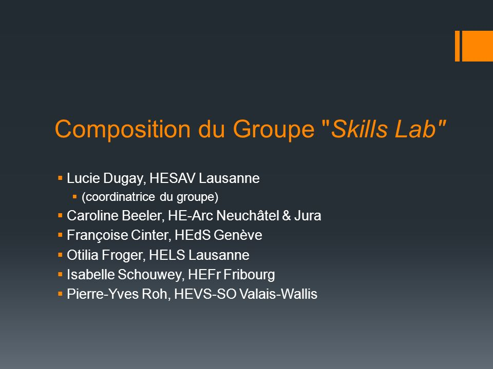 Composition du Groupe Skills Lab