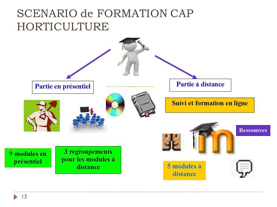 SCENARIO de FORMATION CAP HORTICULTURE
