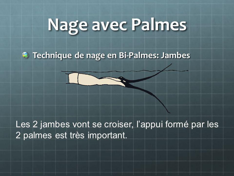 Nage avec Palmes Technique de nage en Bi-Palmes: Jambes