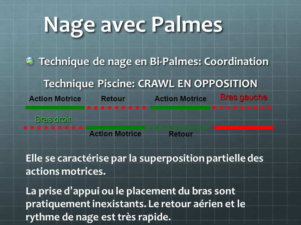 Technique Piscine: CRAWL EN OPPOSITION