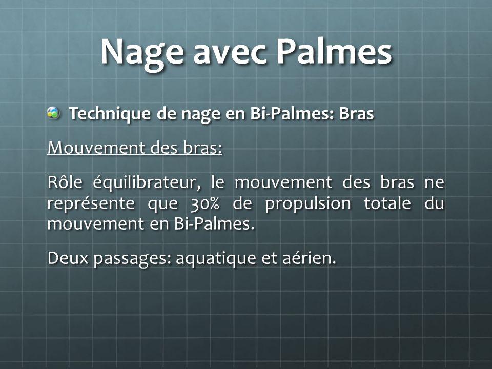 Nage avec Palmes Technique de nage en Bi-Palmes: Bras