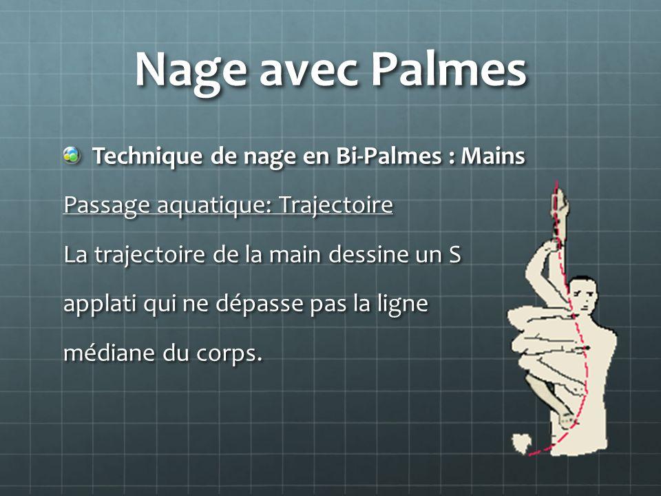 Nage avec Palmes Technique de nage en Bi-Palmes : Mains