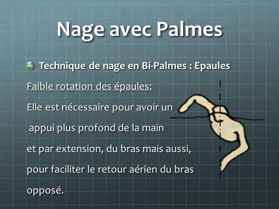 Nage avec Palmes Technique de nage en Bi-Palmes : Epaules