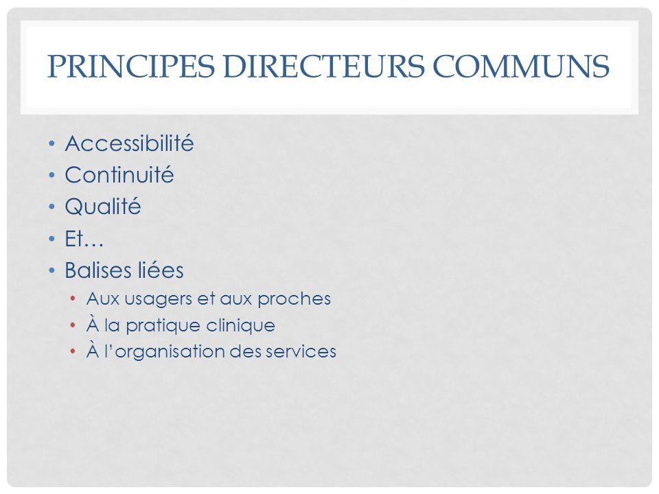 Principes directeurs communs