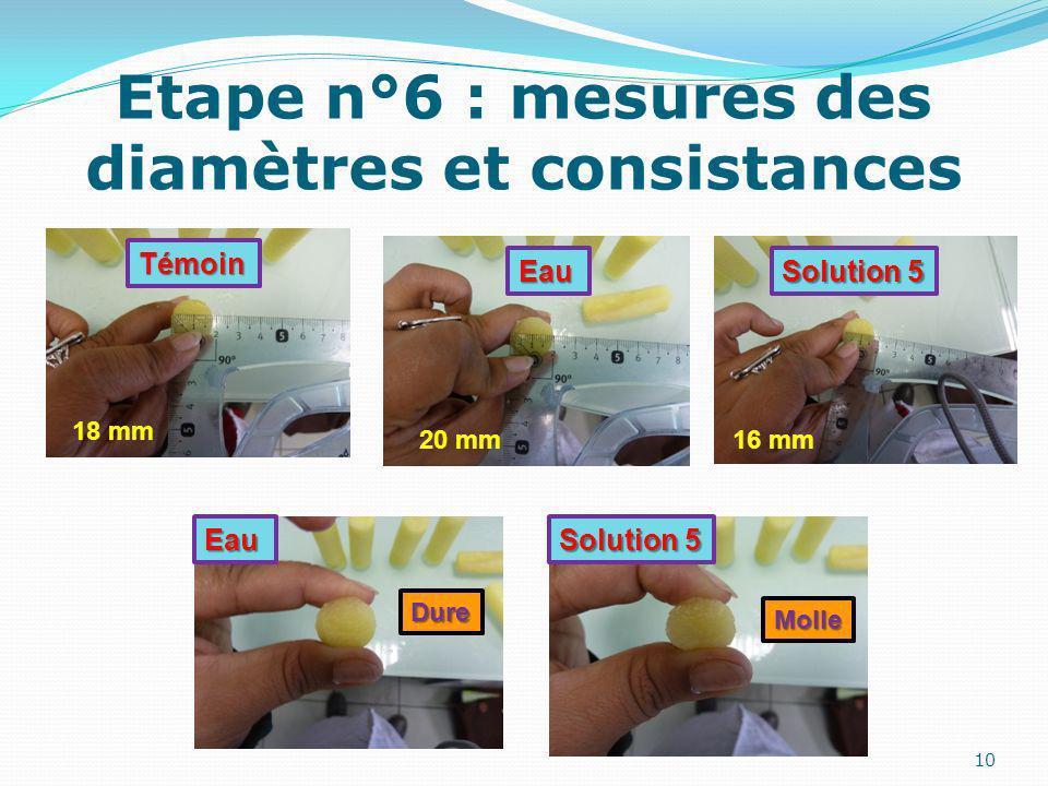 Etape n°6 : mesures des diamètres et consistances