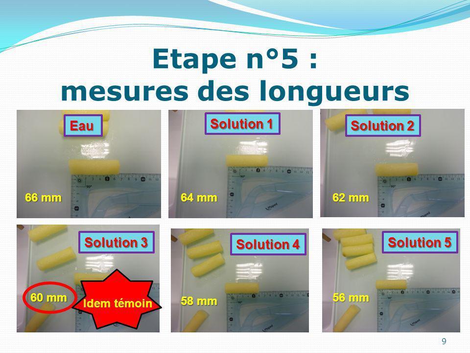 Etape n°5 : mesures des longueurs