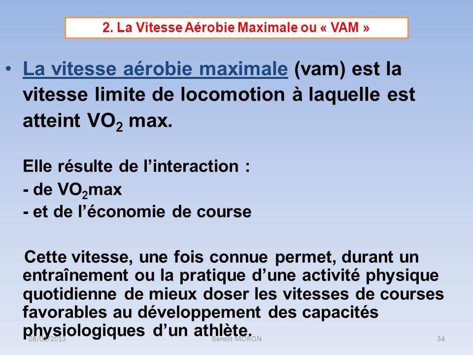 2. La Vitesse Aérobie Maximale ou « VAM »
