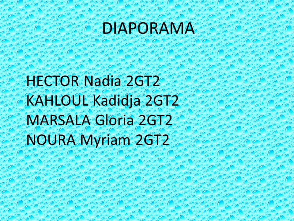 DIAPORAMA HECTOR Nadia 2GT2 KAHLOUL Kadidja 2GT2 MARSALA Gloria 2GT2