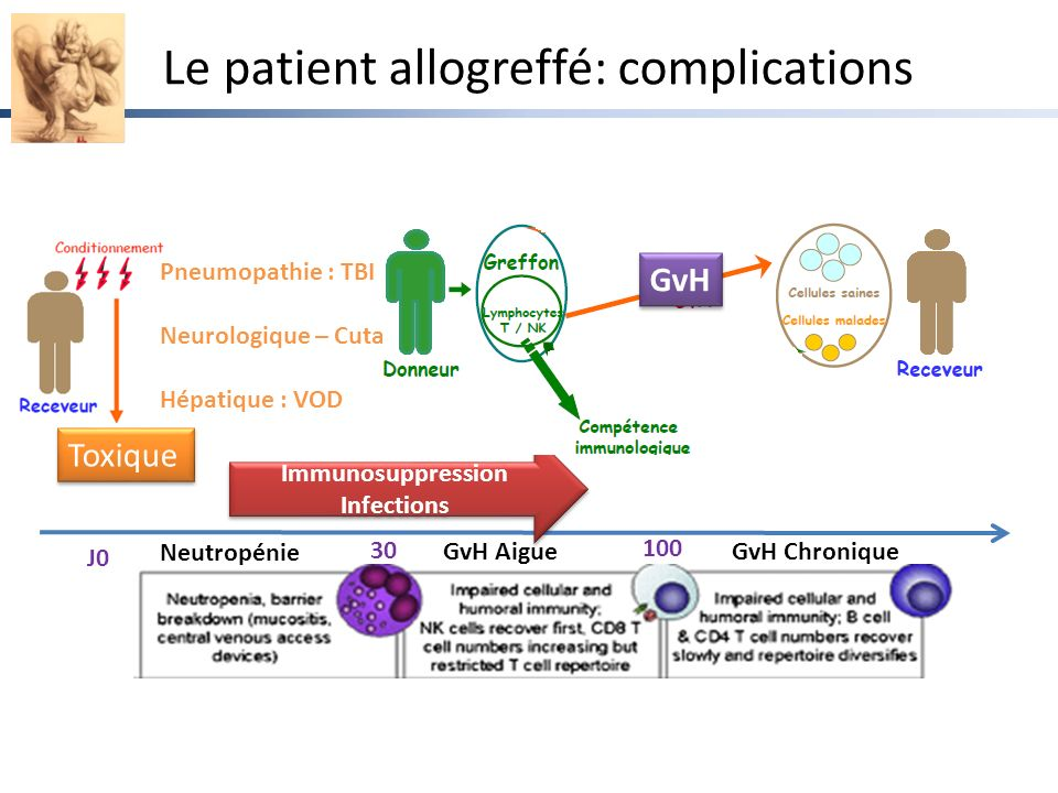 Le patient allogreffé: complications