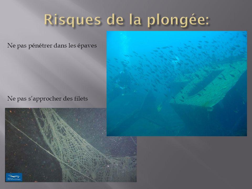 Risques de la plongée: Ne pas pénétrer dans les épaves